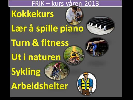 FRIK – kurs våren 2013