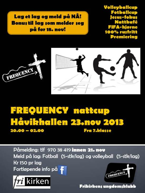 FREQUENCY  nattcup 2013 plakatx