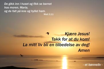 Bønneliv 1