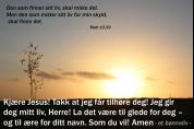 Bønneliv 16