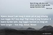 Bønneliv 17