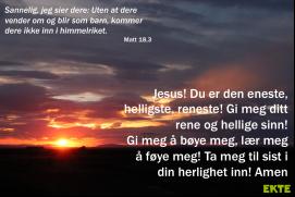 Bønneliv 22