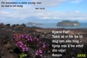 Bønneliv 24