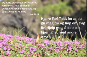 Bønneliv 27