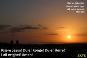 Bønneliv 32