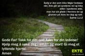Salme1