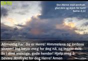 Salme2