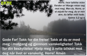 Salme3