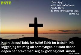 Salme4