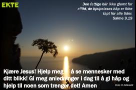 Salme9